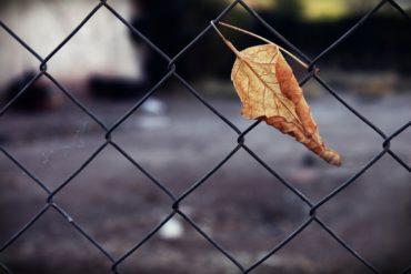 cristina redondo articulo de opinión novedades literarias